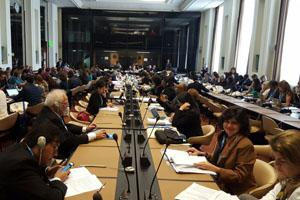 Fioocruz delegation in a meeting in Geneve.
