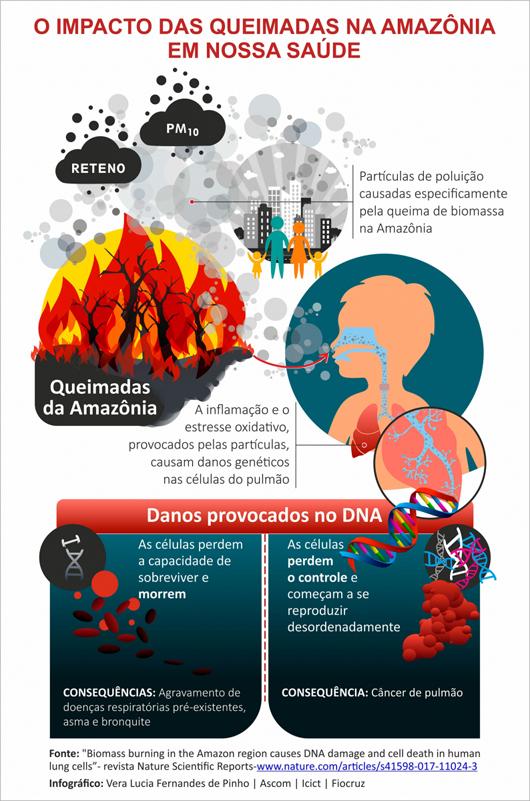 o impacto das queimadas na Amazônia em nossa saúde